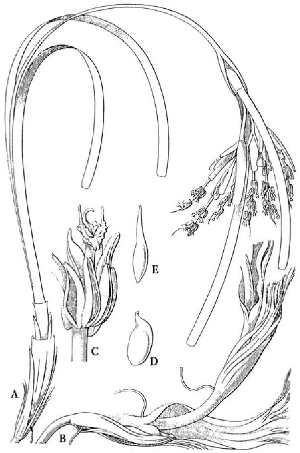 figure 95