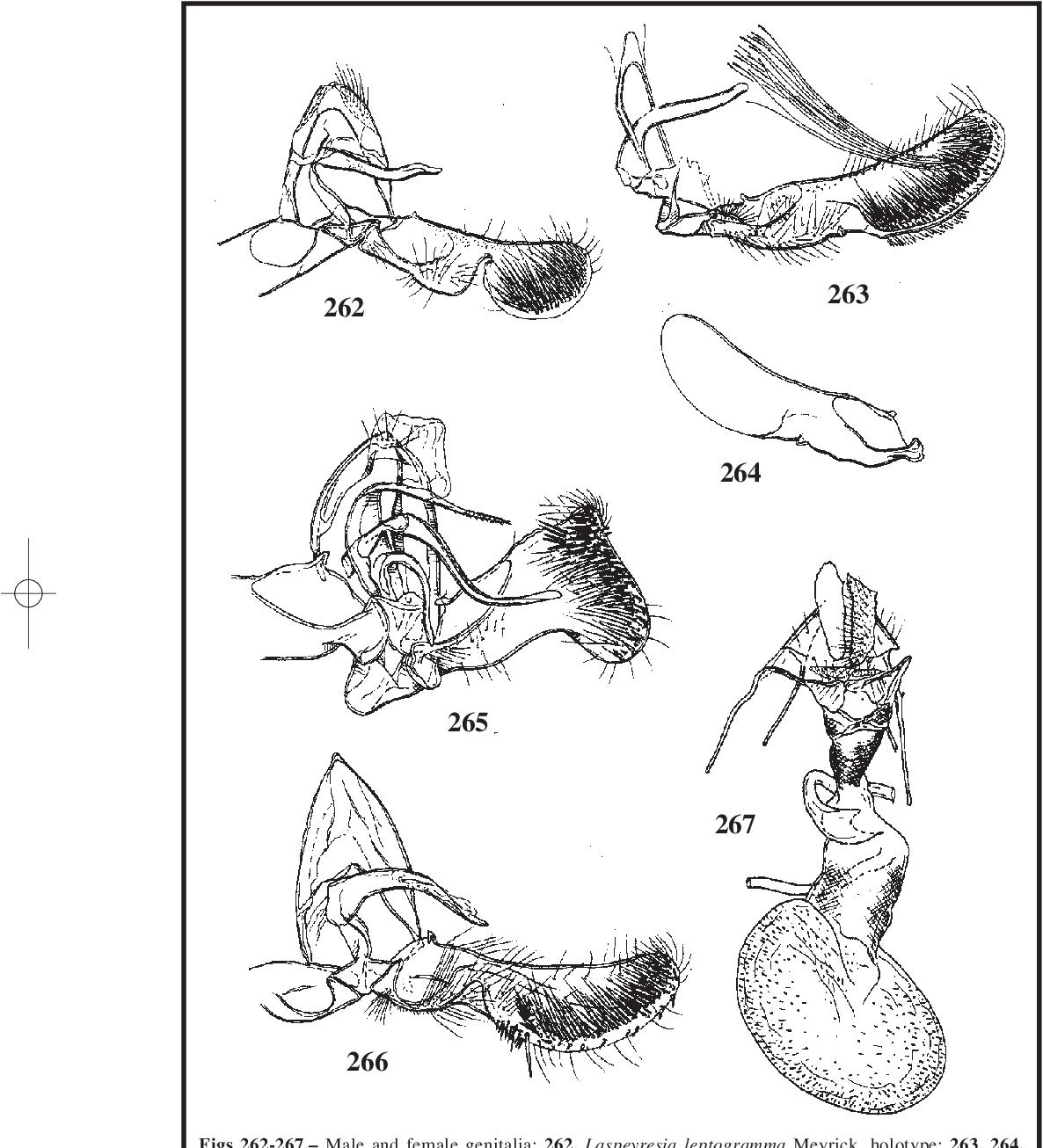 figure 262-267