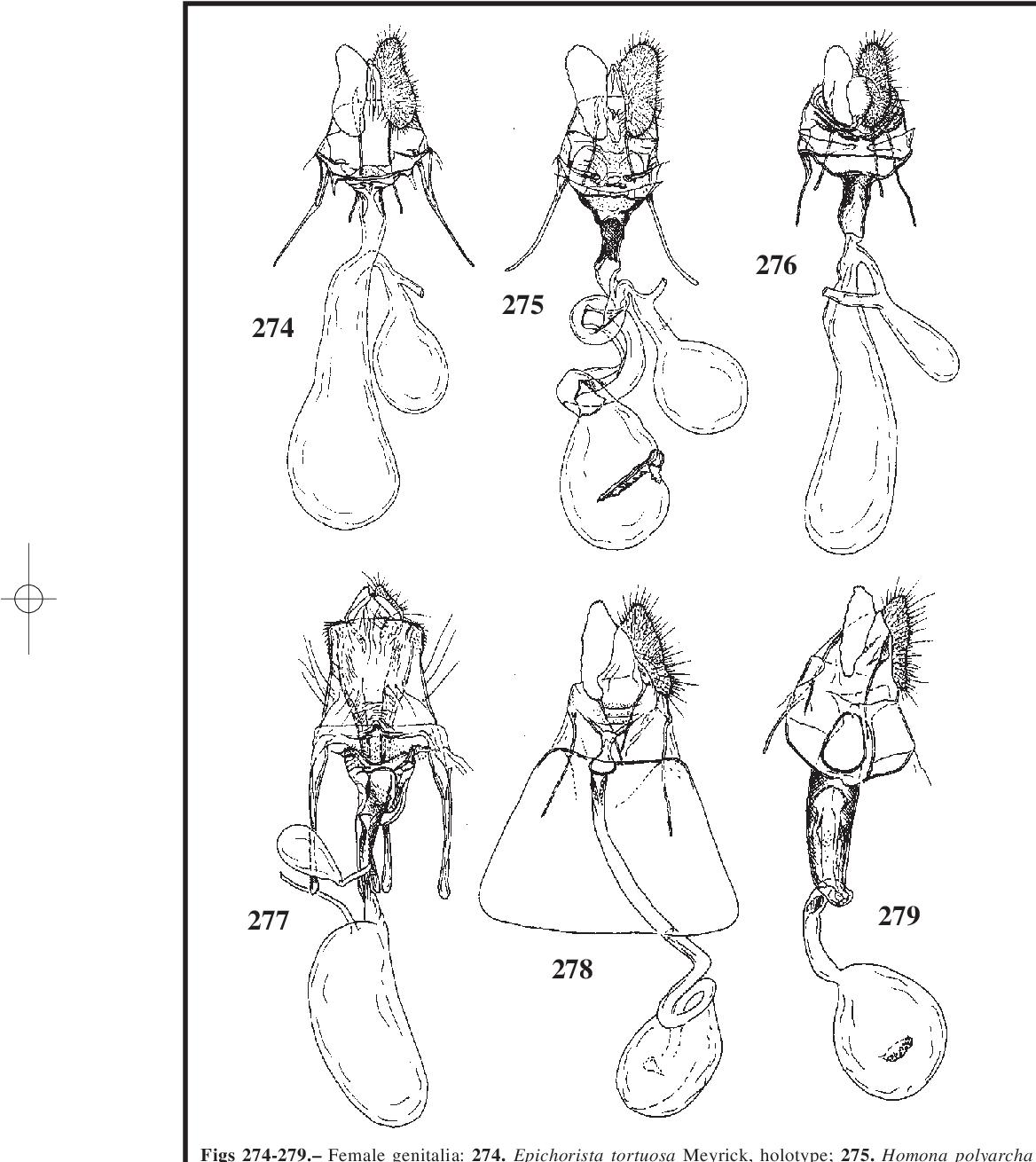 figure 274-279