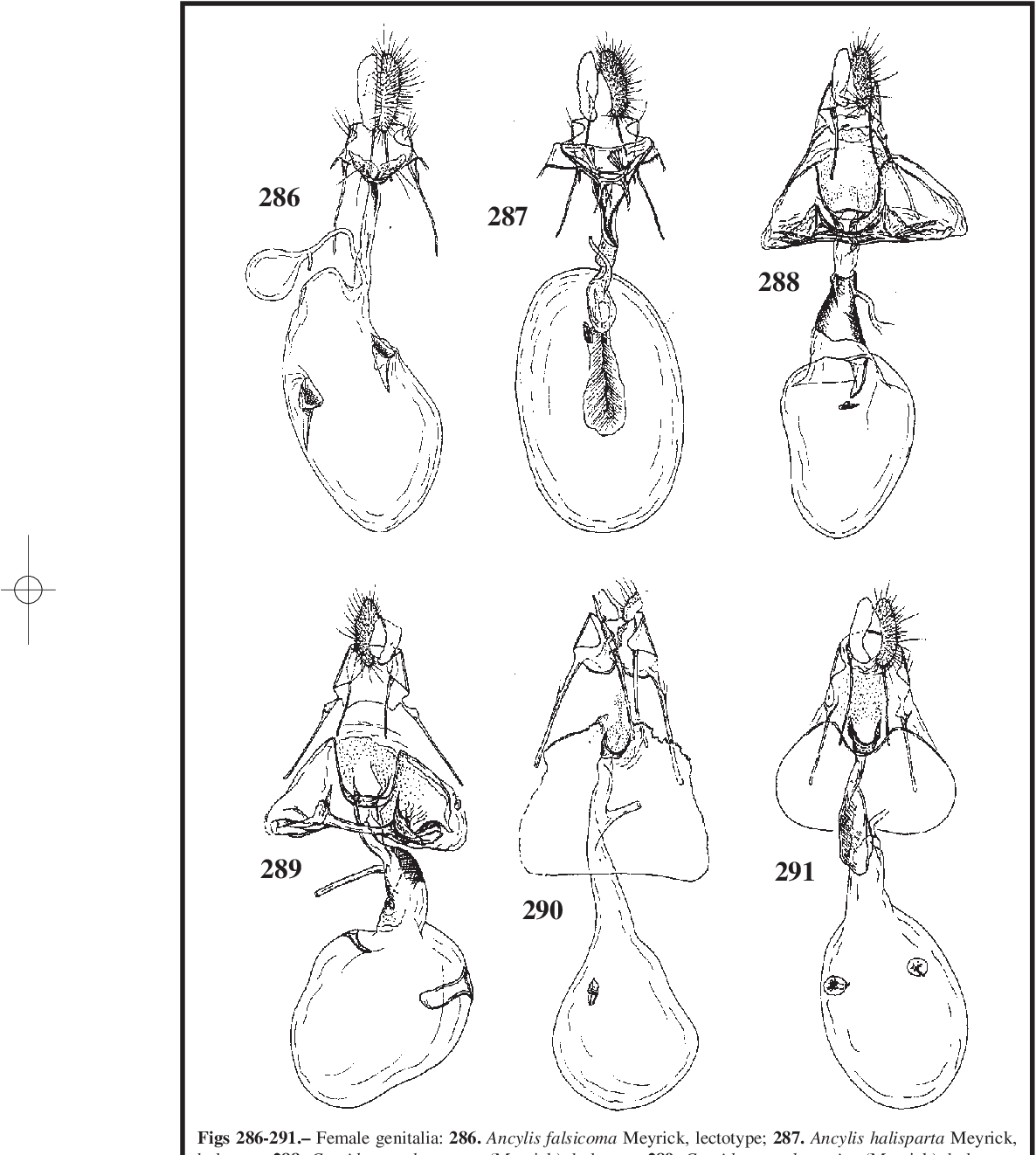 figure 286-291