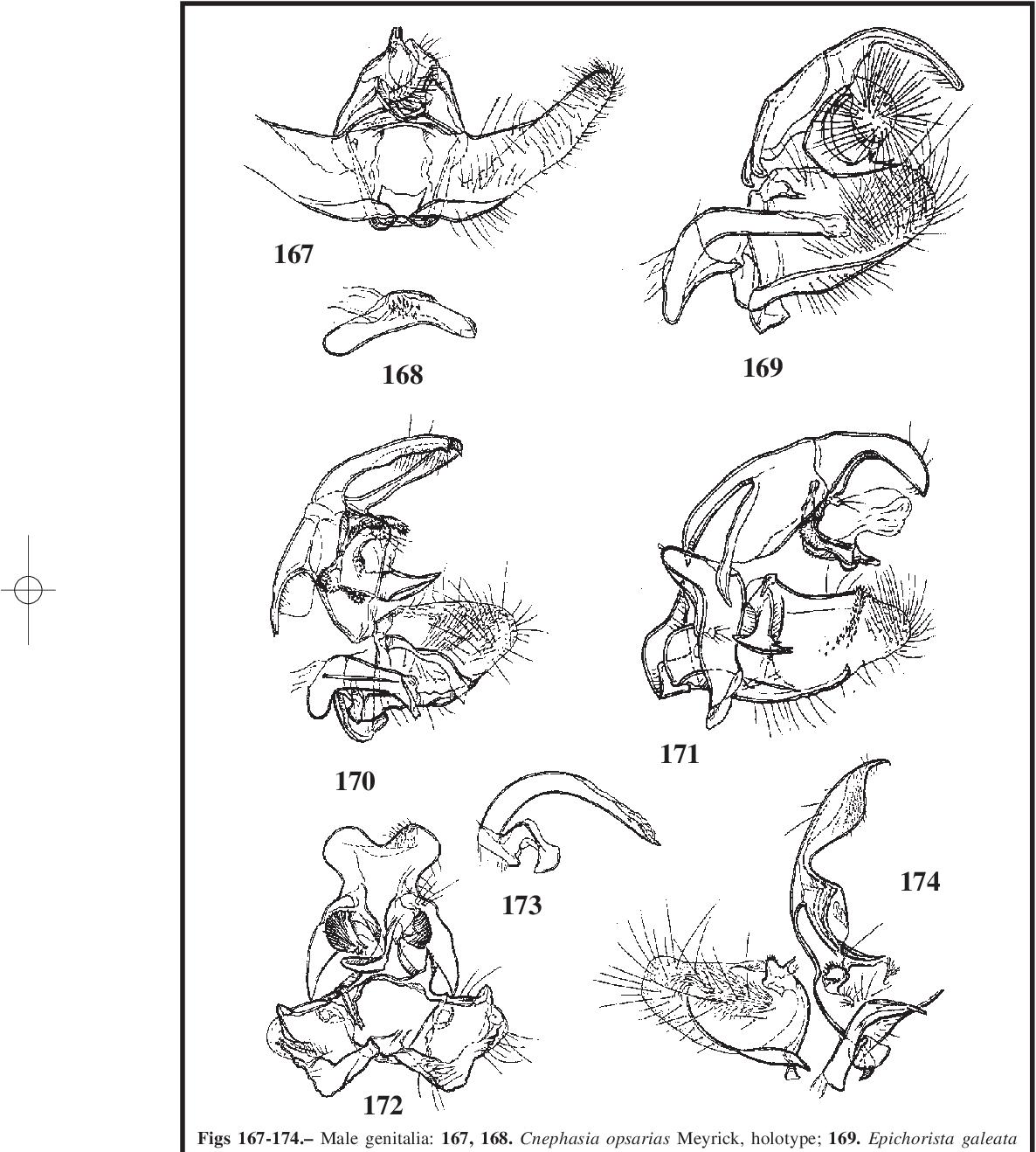 figure 167-174