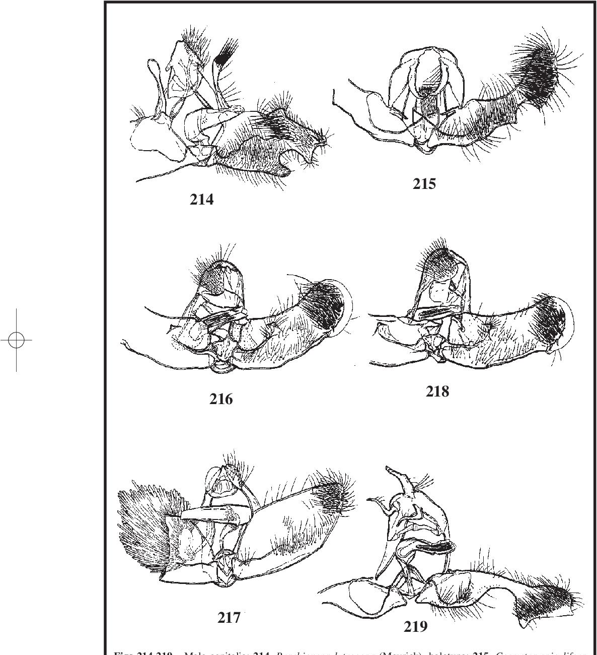 figure 214-219