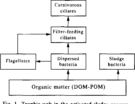 Figure 1 from A sludge biotic index (SBI) for the evaluation