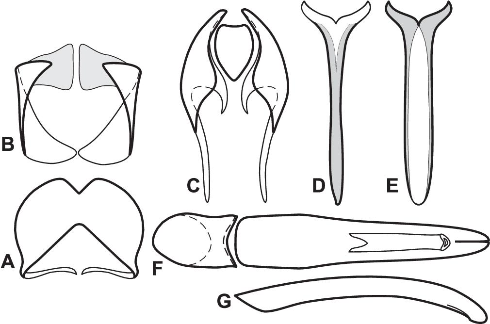 figure 61