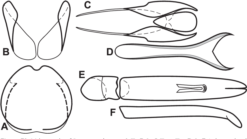 figure 79
