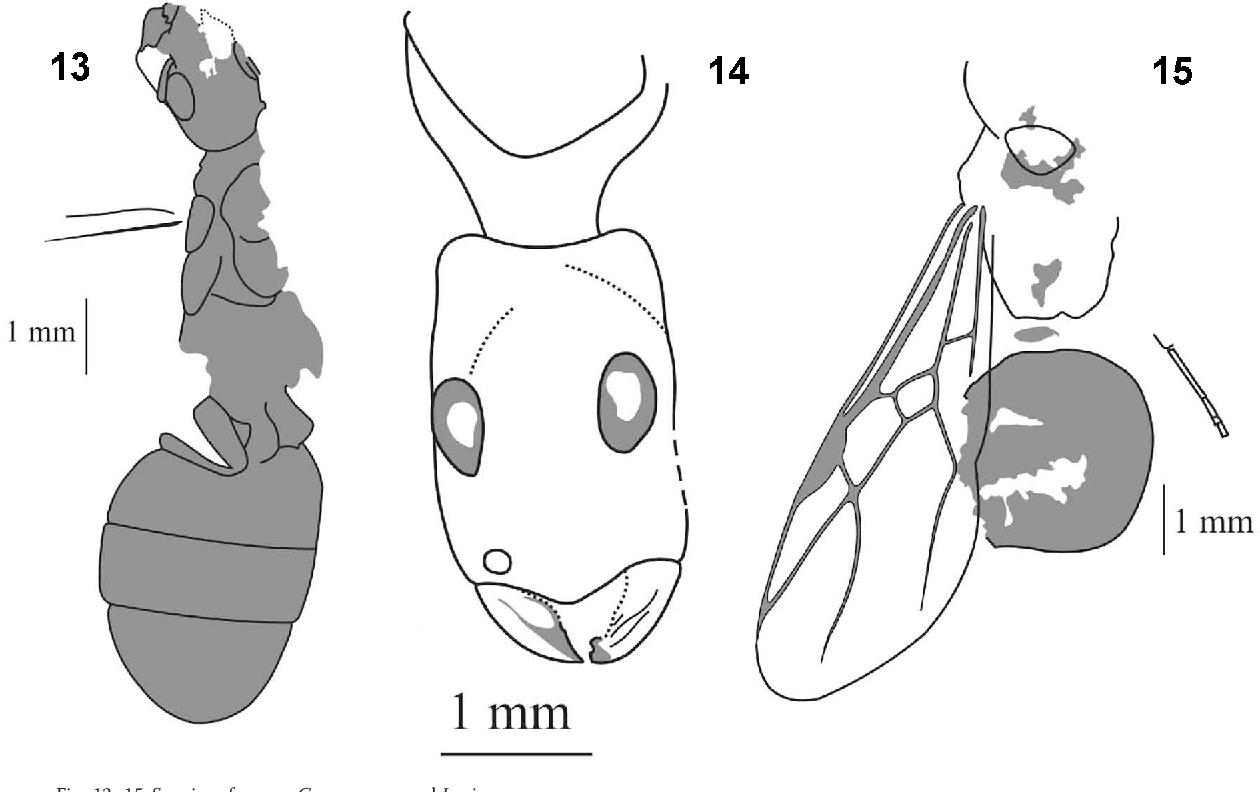 figure 13–15