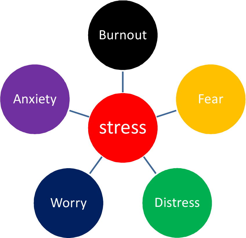 Causes of students' stress, its effects on their academic ...
