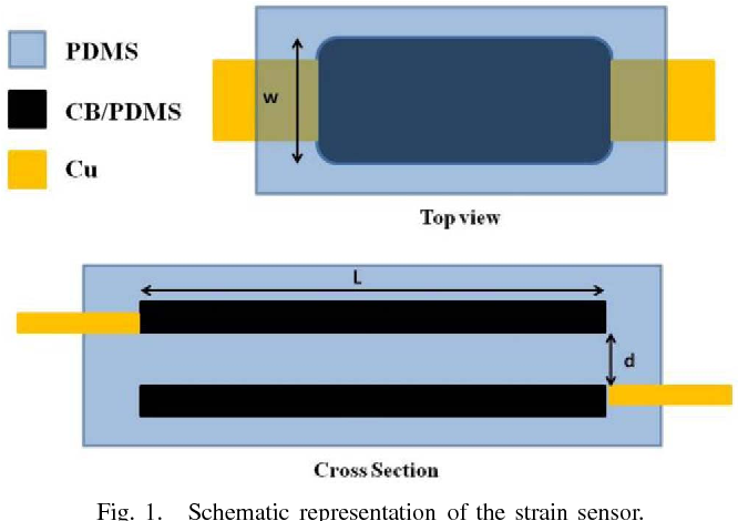 Modeling and Development of a Flexible Carbon Black-Based