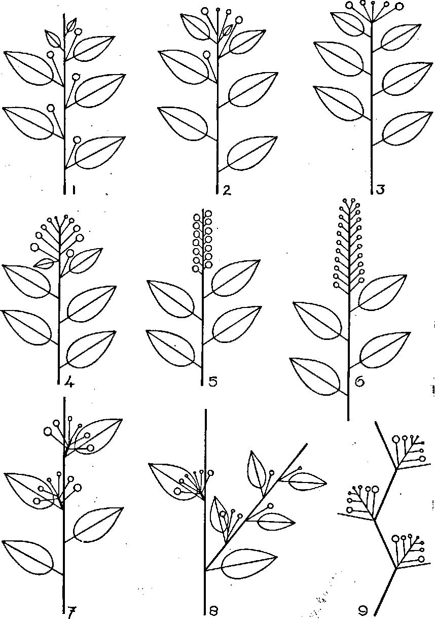figure 1—9