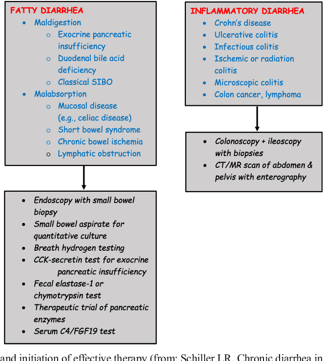 Chronic Diarrhea Evaluation In The Elderly Ibs Or Something Else Semantic Scholar
