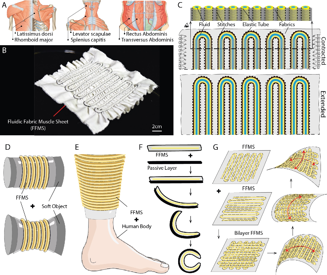 「Fluidic Fabric Muscle Sheets for Wearable and Soft Robotics」の画像検索結果