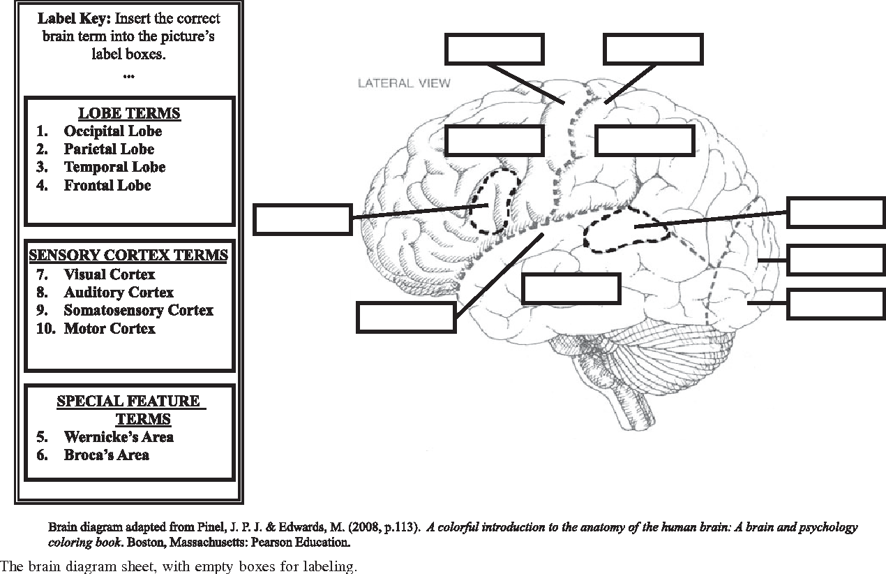 Figure 1 from Showercap Mindmap: a spatial activity for