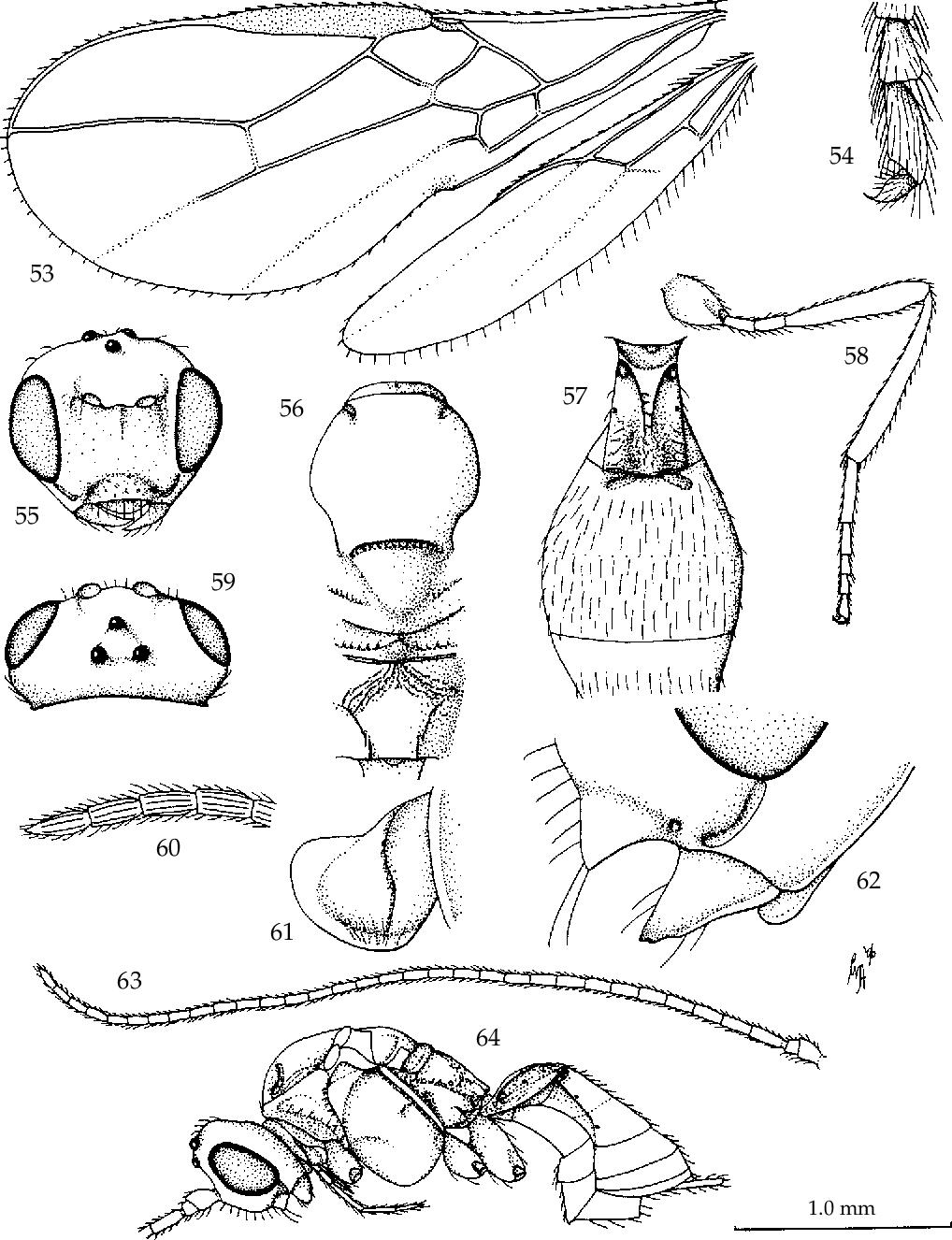 figure 53-64