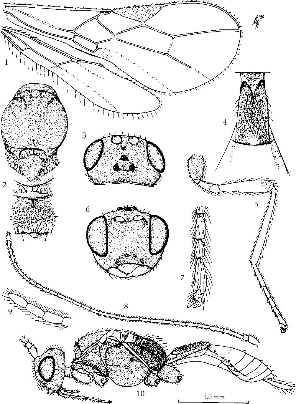 figure 1-10