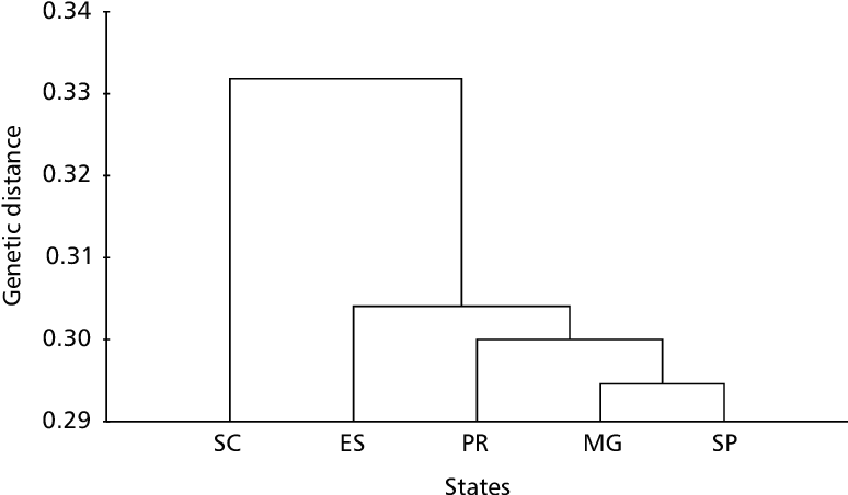 Fig. 1 — Dendrogram generated by UPMGA illustrating the genetic distances between regions, calculated from RAPD data obtained from bulk DNA samples of 10 individuals per M. quadrifasciata colony, amplified with 29 primers.