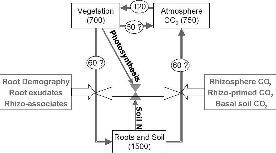 figure 7–1