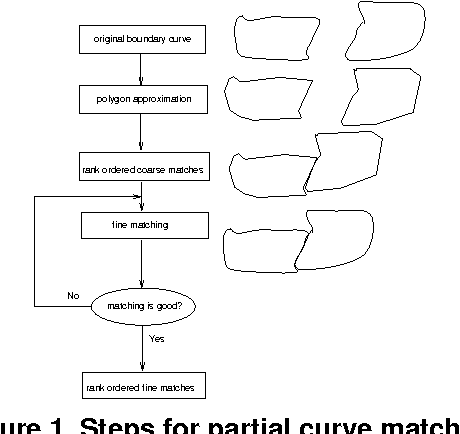 On solving 2D and 3D puzzles using curve matching - Semantic
