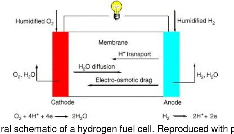 PDF] Metal-Organic Frameworks and MOF-derived Carbon