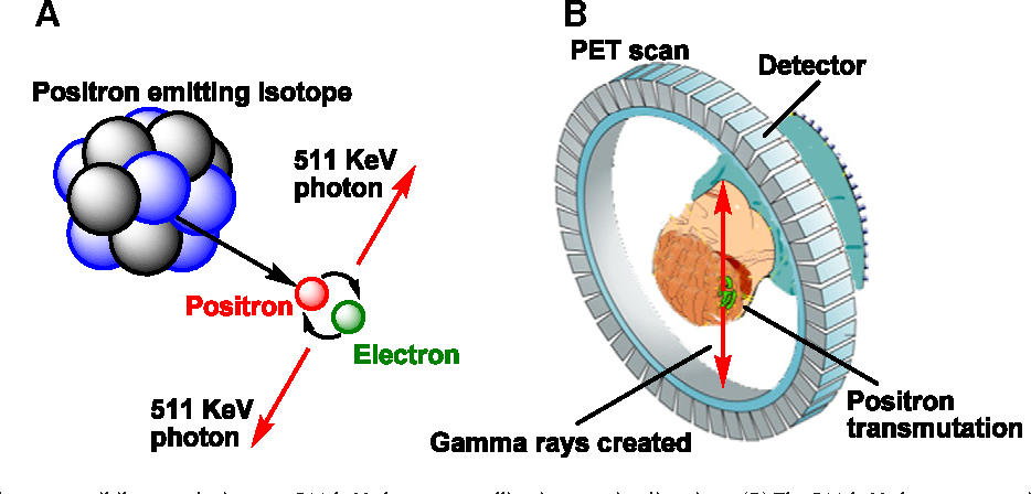 Figure 1 From Radiopharmaceutical Chemistry For Positron