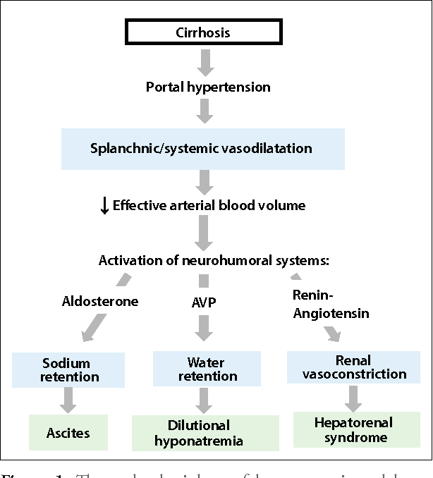 Figure 1 from Hyponatremia and Hepatorenal Syndrome