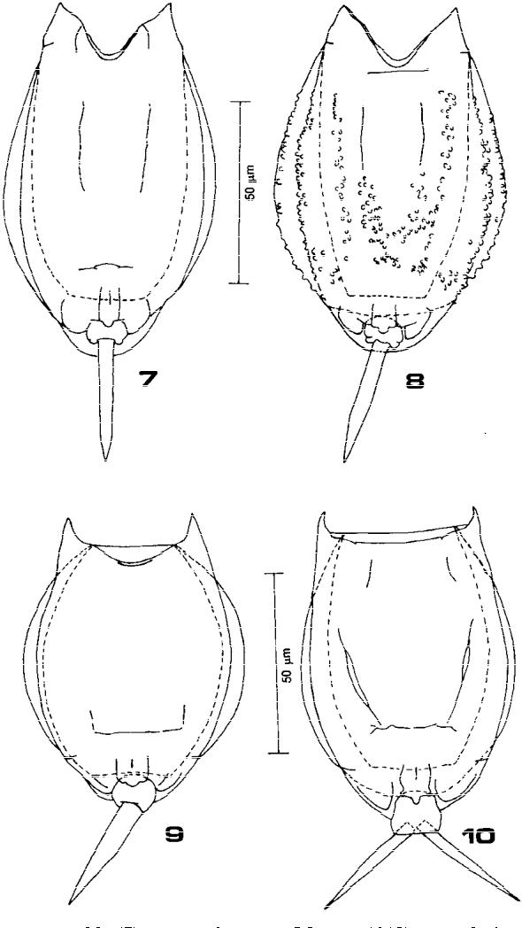 figure 7–10