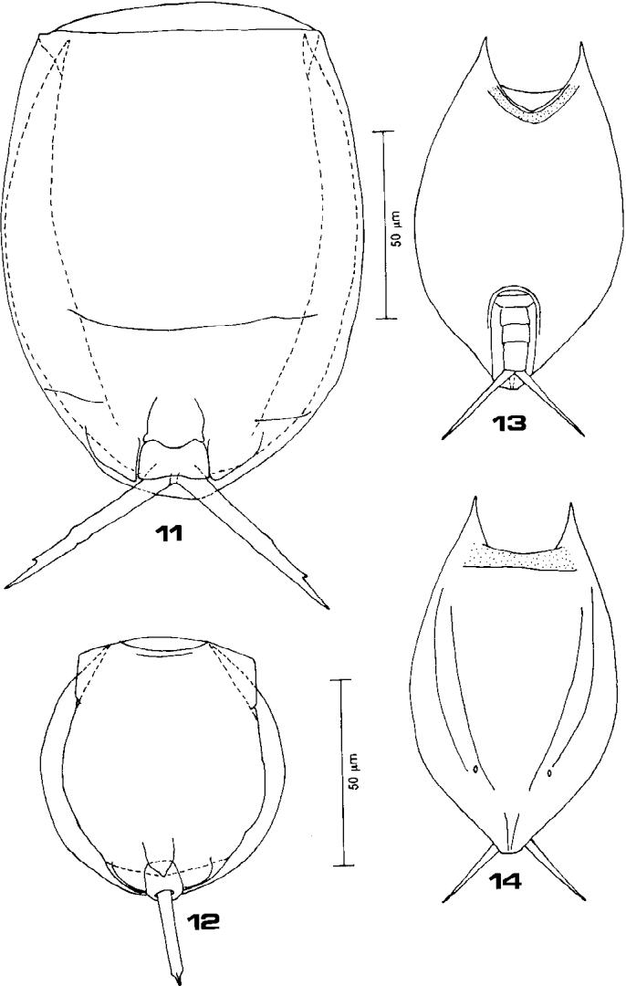 figure 11–14
