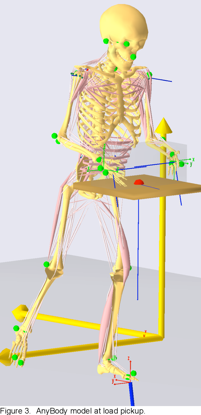 PDF] Assessing the Importance of Motion Dynamics for Ergonomic ...