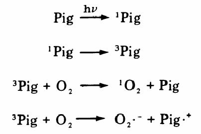 figure 1-11