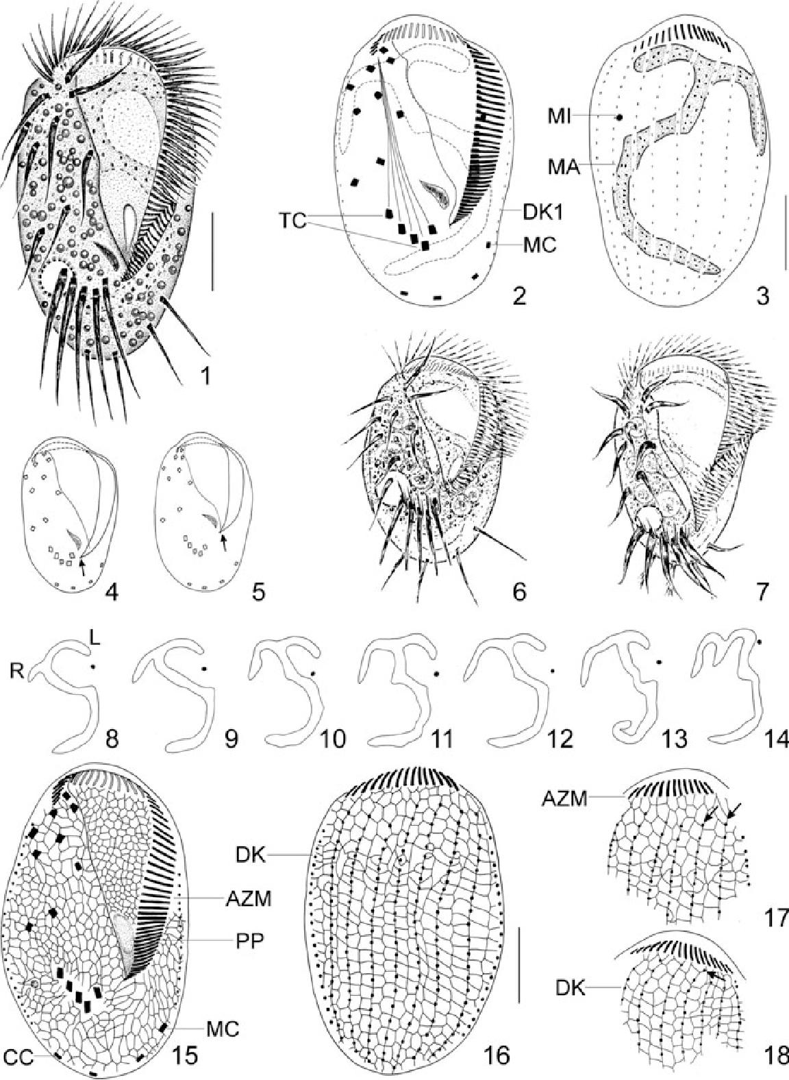 figure 1–18