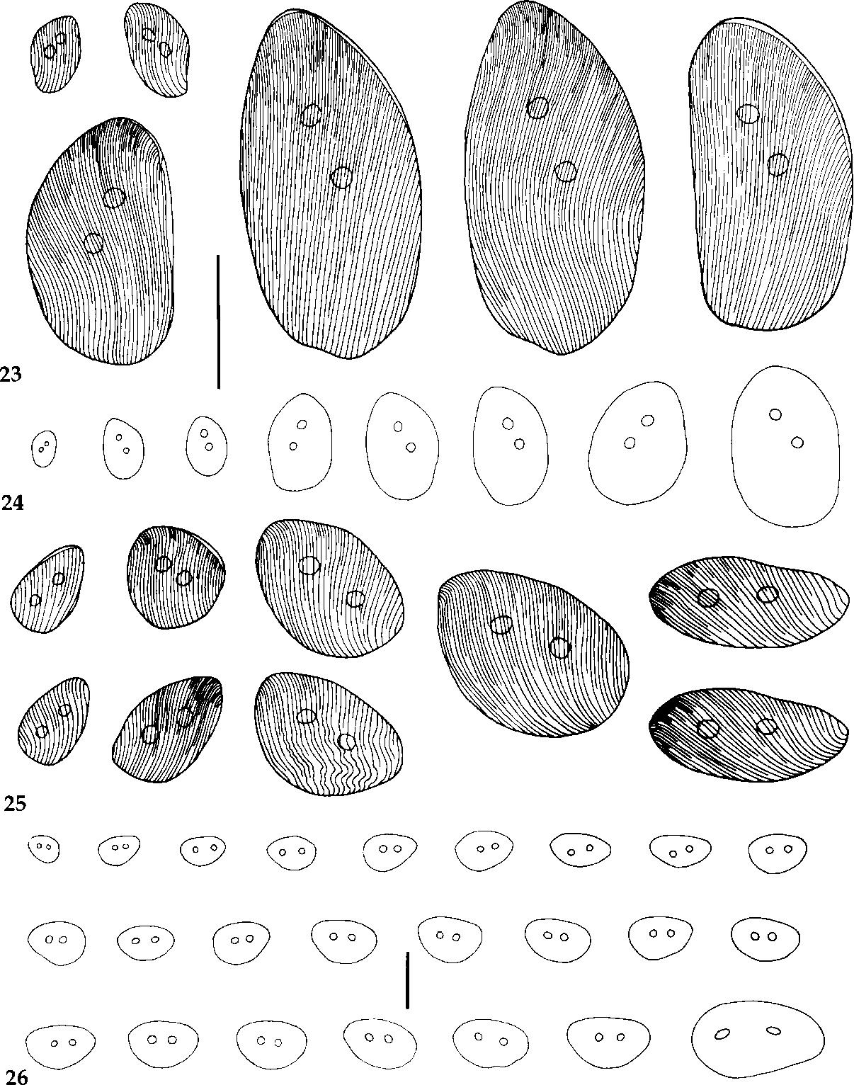 figure 23-26