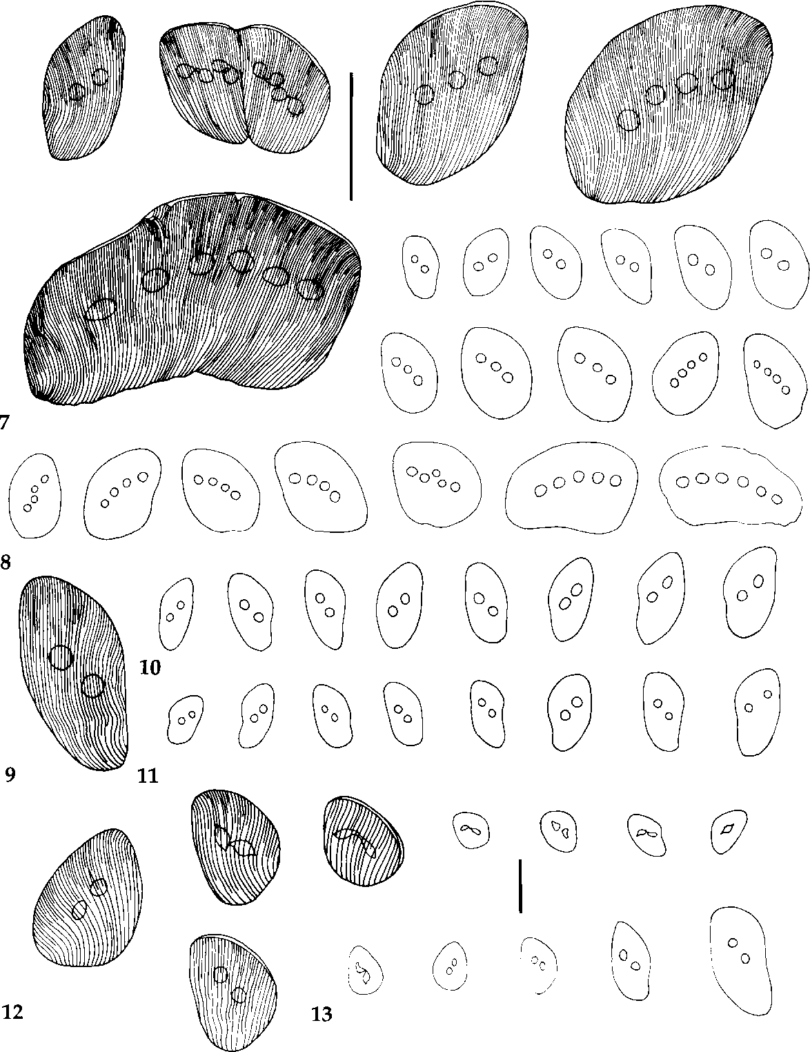 figure 7-13
