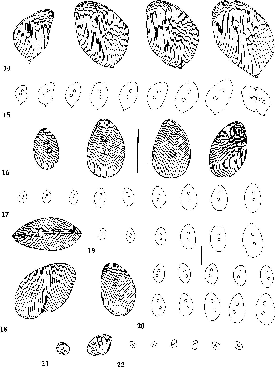 figure 14-22