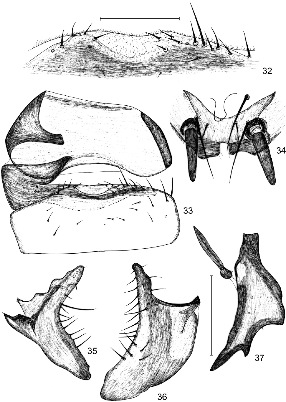 figure 32–37