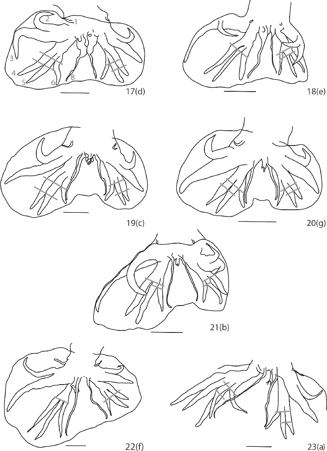figure 17-23