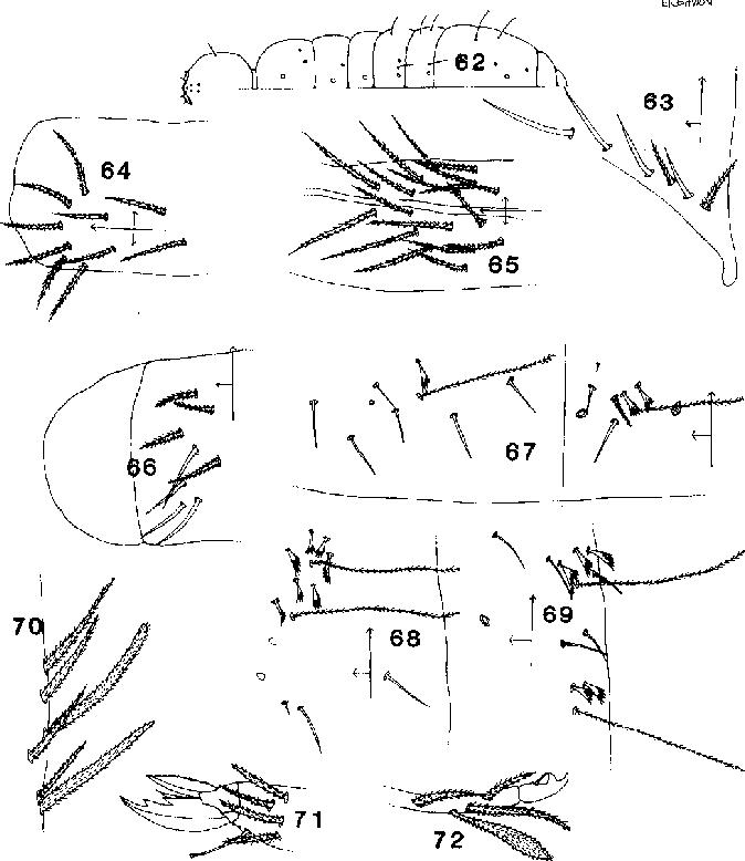 figure 62-72