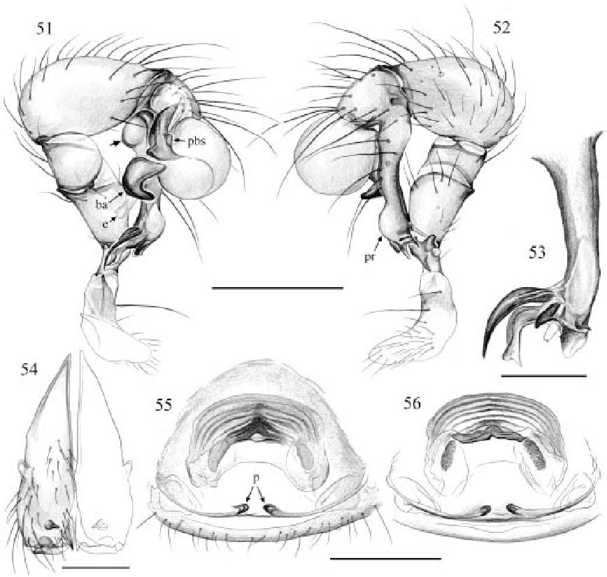 figure 51–56