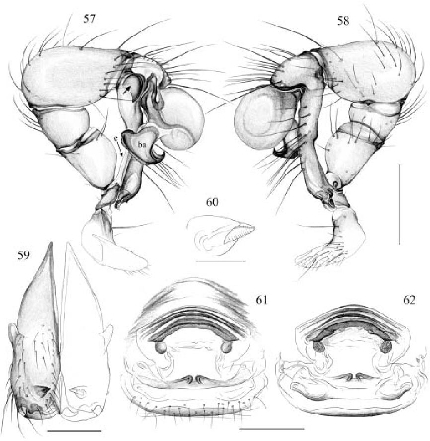figure 57–62