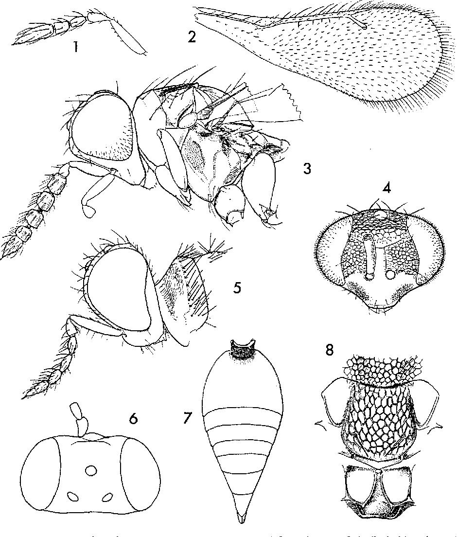 figure 1-8