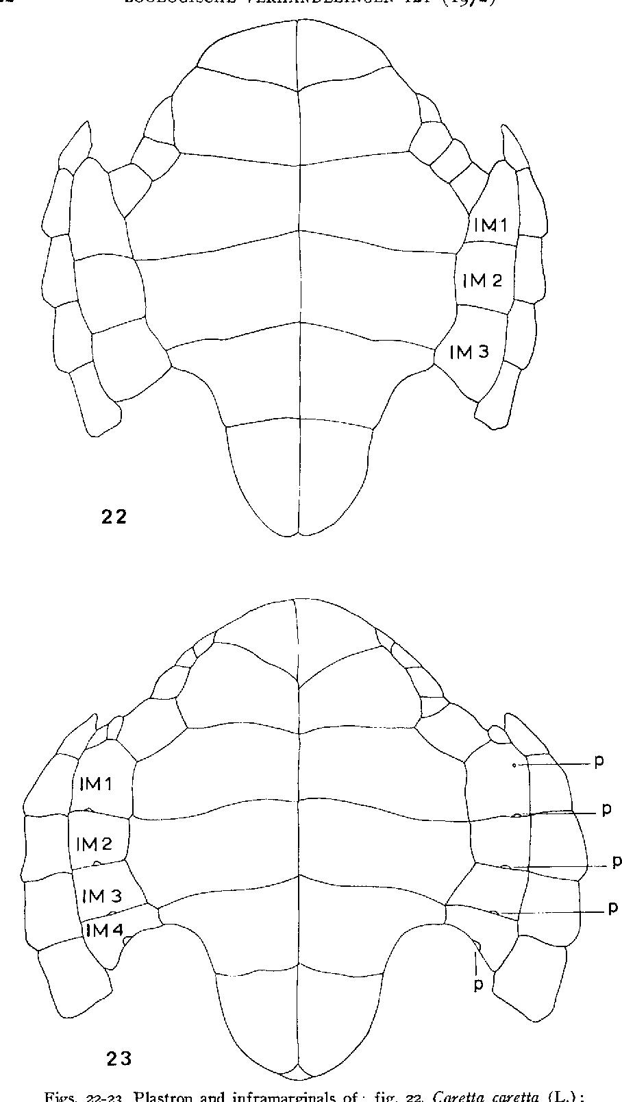 figure 22-23