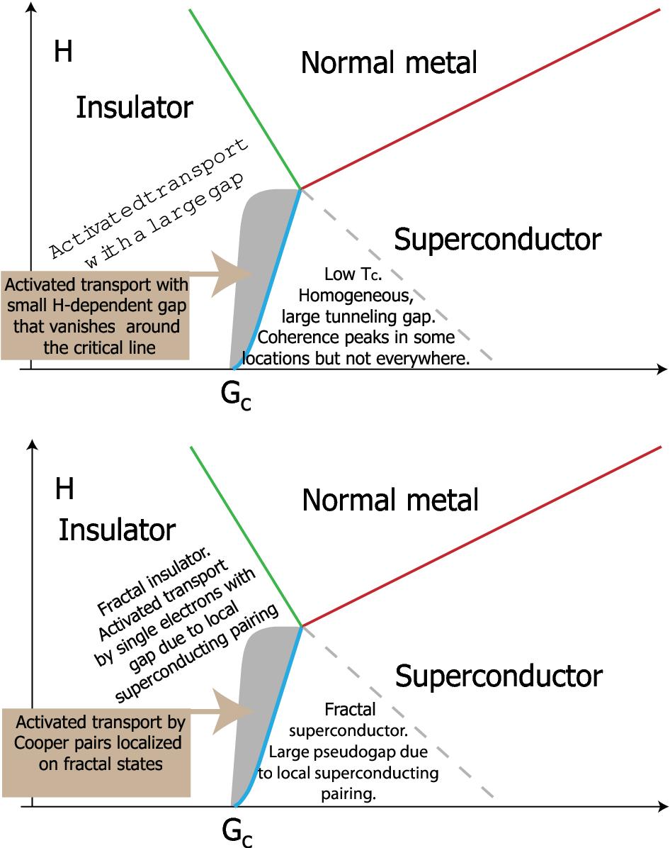 Superconductivity and localization