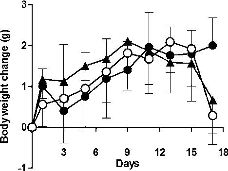 Curcumin enhances the antitumor effect of erlotinib in