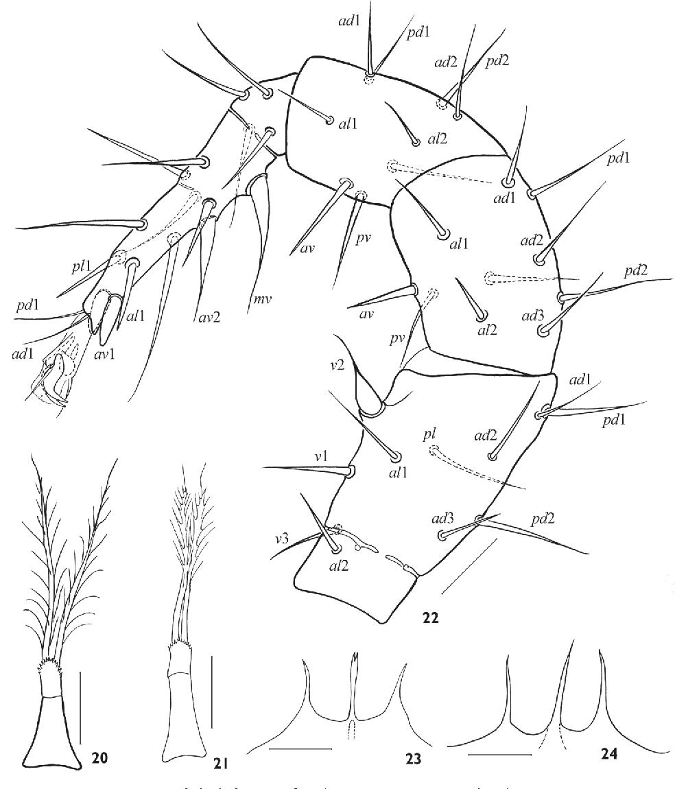 figure 20–24