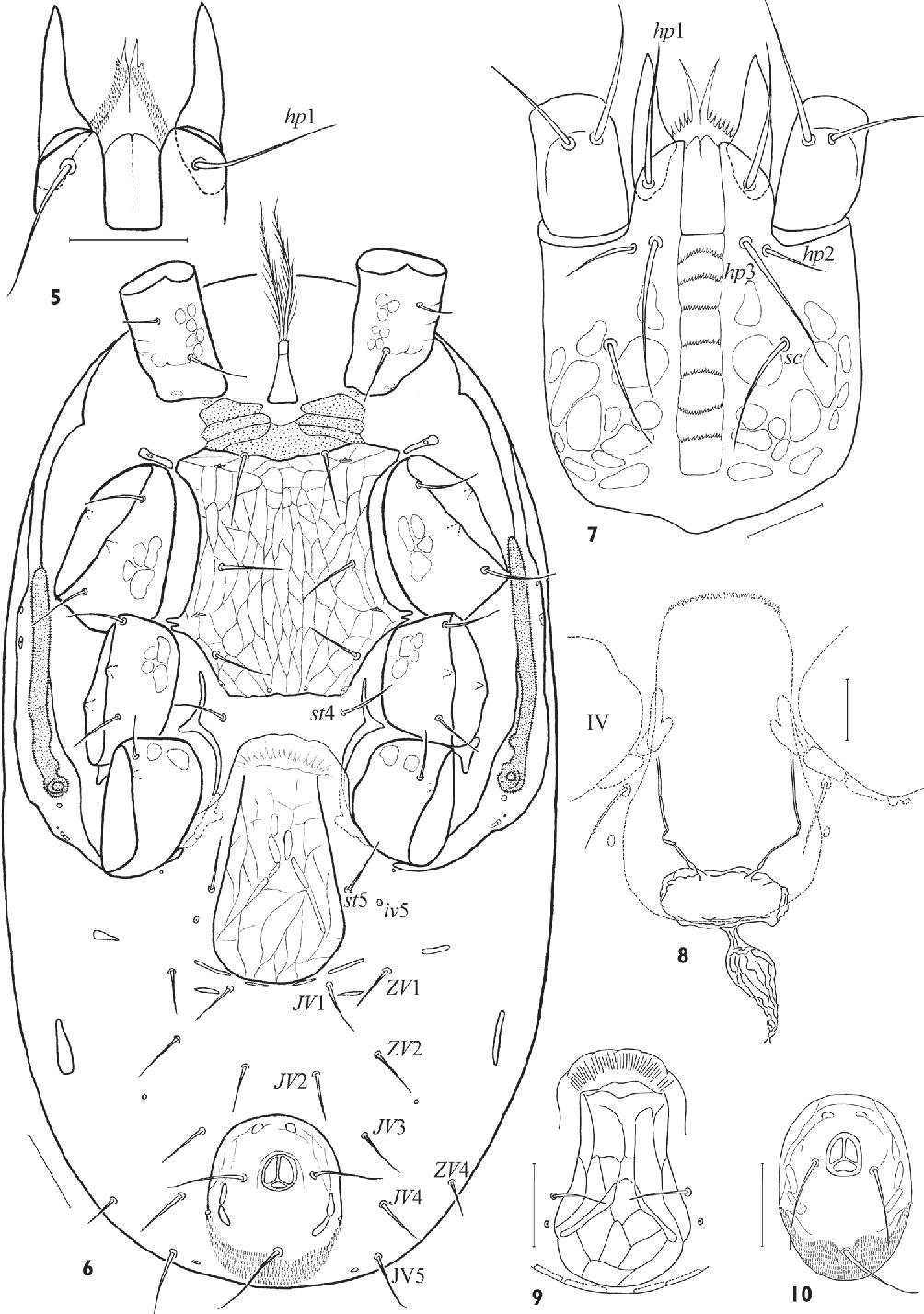 figure 5–10