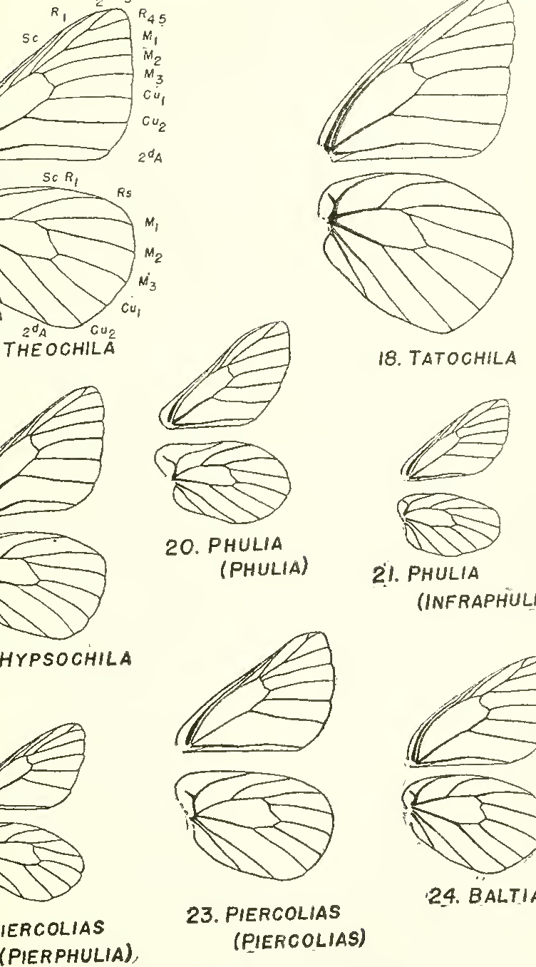 figure 17-24