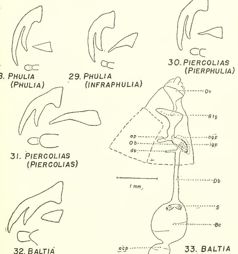 figure 25-33