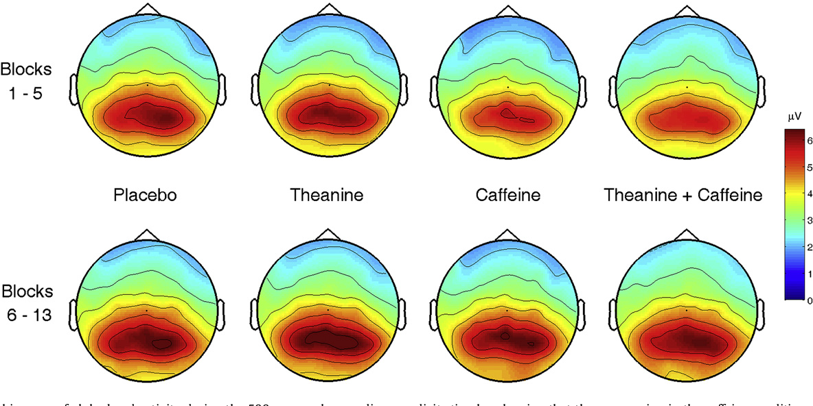 Assessing the effects of caffeine and theanine on the