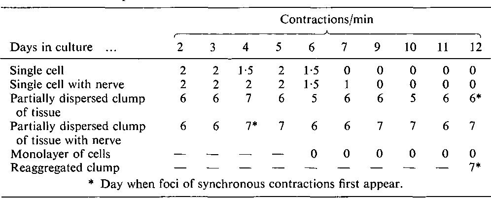 PDF] Dedifferentiation, redifferentiation and bundle