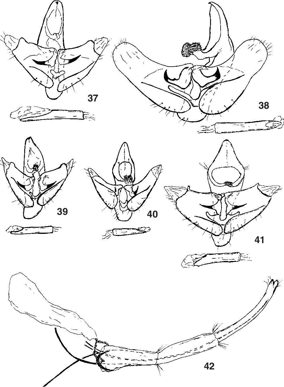 figure 37-41