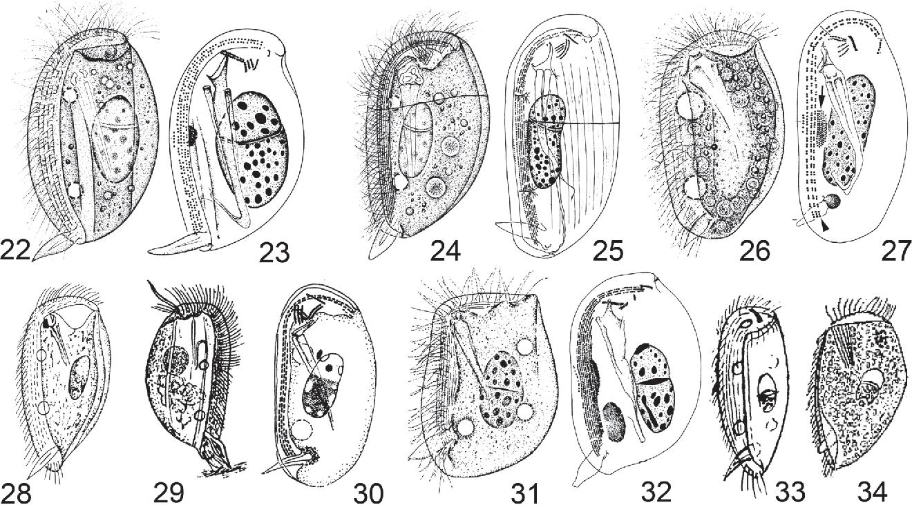 figure 22–34
