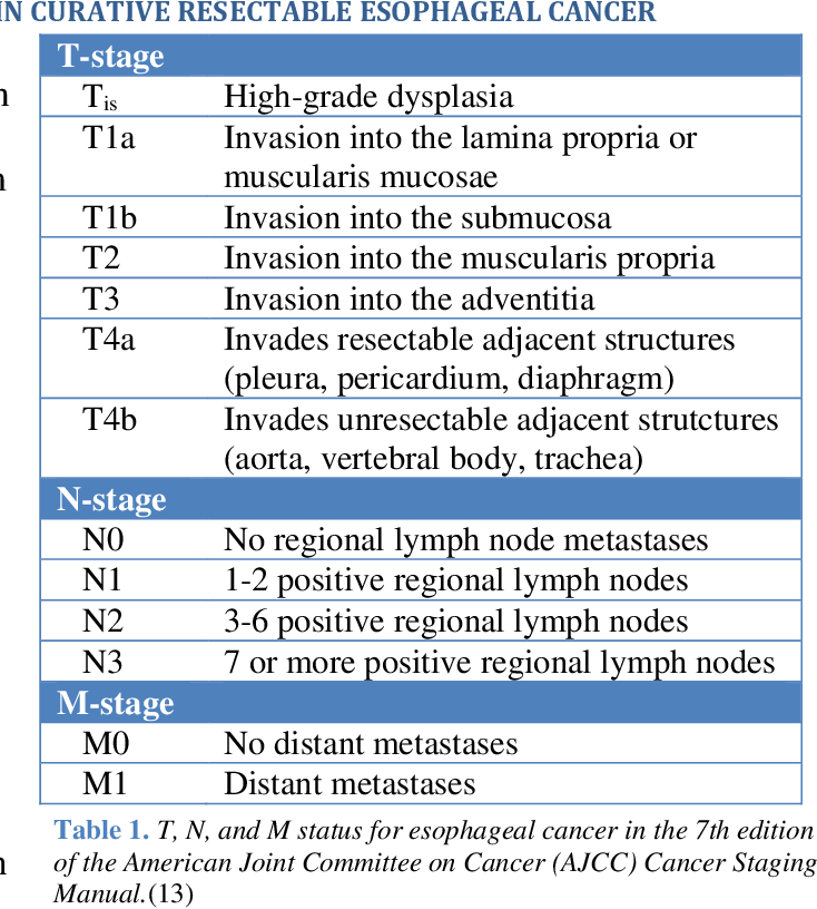 PDF] Clinical lymph node staging and impact on different treatment ...